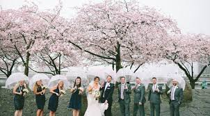 cherry blossom wedding portland cherry blossom wedding photos yasmin khajavi