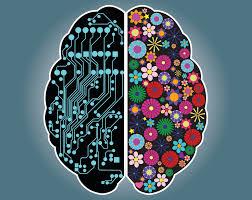 Most Comfortable Bra In The World Right Brain Left Brain Right Harvard Health Blog Harvard
