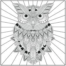 coloring page for adults owl fresh owl mandala coloring pages design printable coloring sheet