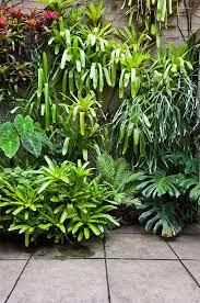 Balinese Garden Design Ideas Disguise Walls Try Disguising Garden Walls With A Tumble Of