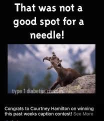 Type 1 Diabetes Memes - 508 best diabetic humor images on pinterest type 1 diabetes