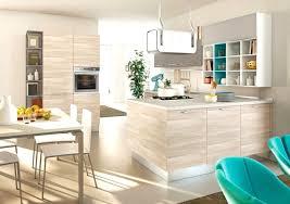 ag e de cuisine cuisine en bois clair moderne