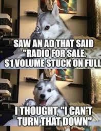 Pun Husky Meme - bad pun dog pinteres