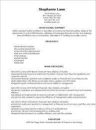 Sample Resume Of Accountant by Professional Auditor Resume Templates To Showcase Your Talent