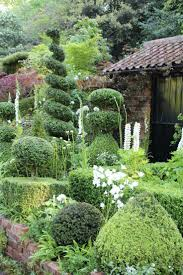 883 best plant and garden colours green images on pinterest