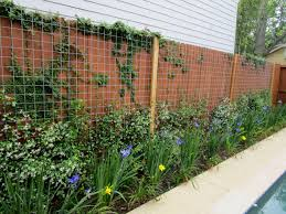 garden design garden design with green fence designs plants to