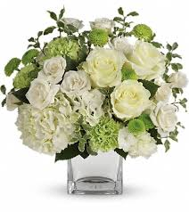 denton florists flowers in denton tx denton florist