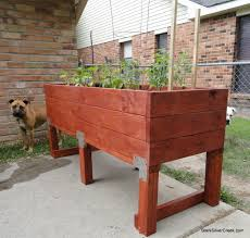 build a doggie proof vegetable planter box stark insider