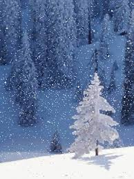 tree snow gif find on giphy
