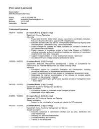 Cv Vorlage Englisch Usa Lebenslauf Downloaden Englisch E Fellows Net