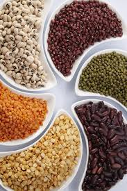 legumes cuisine the of the fascinating legume