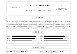 Resume Job Title Format by Professional Resume Template Docx