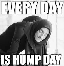 Hump Day Meme - hump day memes imgflip