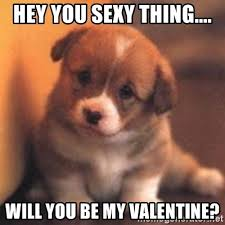 Sexy Valentine Meme - hey you sexy thing will you be my valentine cute puppy meme