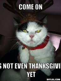 Thanksgiving Cat Meme - thanksgiving cat meme annesutu