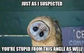 Thursday Meme Funny - the funniest memes on the internet today thursday august 6
