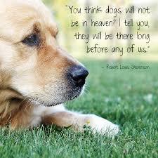 john muir dog quote hubble u0026 hattie famous animal quotes