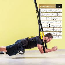 amazon com laminated suspension exercise poster strength