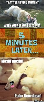 Moshi Moshi Meme - th id oip wwgvqp acqjqhjjg0svamahaq1