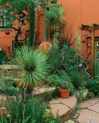 Plants For Patios In The Shade Bringing Sun And Shade Together Fine Gardening