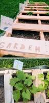 Backyard Designs On A Budget by Best 25 Diy Backyard Improvements Ideas On Pinterest Diy