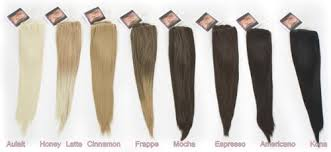 euronext hair extensions clip in hair extensions 21 strawberry