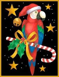 christmas cards parrot style christmas parrots pinterest bird