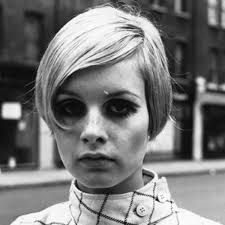 twiggy hairstyle twiggy classic pin ups activist animal rights activist biography