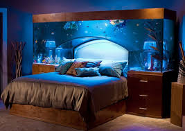 fish tank over bed ideas