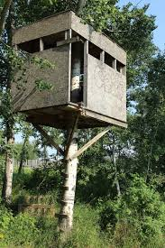 bedroom treehouse for backyard a backyard tree house with zip