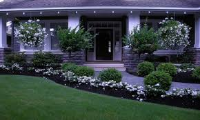 gorgeous low maintenance front yard landscaping flowers front yard
