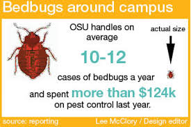 Bed Bugs In Ohio Ohio State Prepared For Chance Of Bed Bug Infestation The Lantern