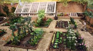 Fruit Garden Ideas How To Plan A Vegetable Garden