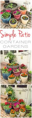 Patio Container Garden Ideas Patio Container Garden Ideas Home Design Ideas And Pictures