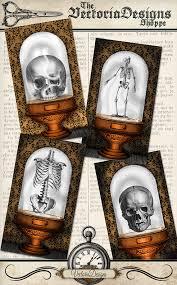 printable halloween specimen jar labels halloween specimen jars cards printable images instant download