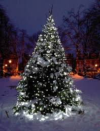 staggering outdoor light ideas tree white