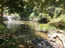 Gardeners Falls Maleny - the water hole picture of gardners falls maleny tripadvisor