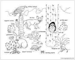 desert owl coloring page cactus coloring pages fresh saguaro cactus coloring page image