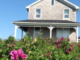 La Maison Du Sud Maison De Lucie Longuépée Cottages Apartments Tourist Homes
