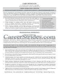 Best Executive Resume Writing Service by Interesting Design Ideas Coo Resume 8 Best Executive Resume Writer