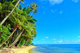 tahiti beautiful palm polynesian sand coconut island france