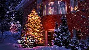 Blisslights Outdoor Firefly Light Projector Lighting Landscape Laser Lighting Priceless Lou