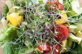 cuisine vivante pour une santé optimale cours alimentation vivante forfait cours de cuisine vivante