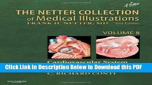 Netter Atlas Of Human Anatomy Online Read Atlas Of Vascular Anatomy An Angiographic Approach Popular
