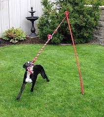 Best Backyard Toys by Best 10 Dog Backyard Ideas On Pinterest Garden Makeover