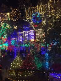 just a sample of the beautiful christmas lights we saw picture