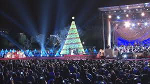 when is the lighting of the national christmas tree home design