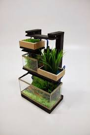 how to make fish tank decorations at home 56 best mini aquaponics images on pinterest urban gardening