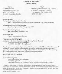 undergraduate curriculum vitae pdf sles sle of cv resume doc sle of curriculum vitae for job