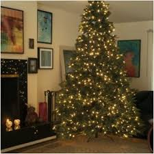9 best dual color string lights trees and wreaths images on
